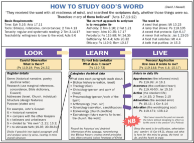 how to study Gods word