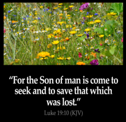 son seeks to save lost luke 19 verse 10