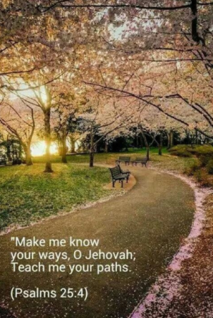teach me your ways and path