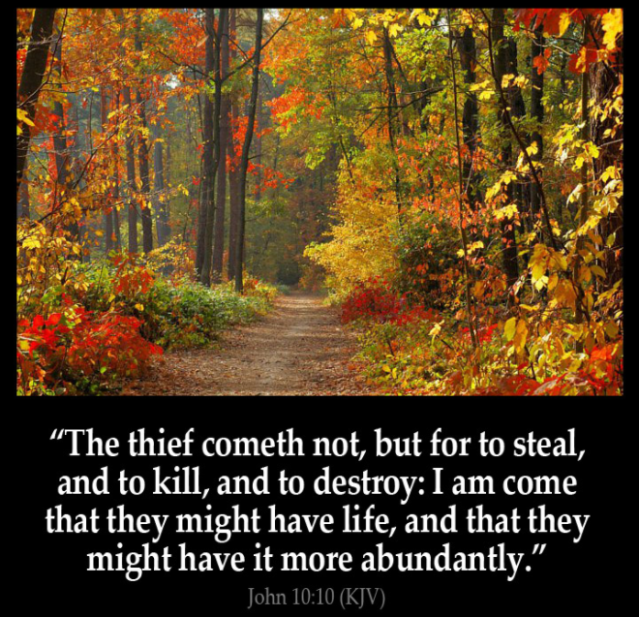 john 10 verse 10 life more abundant