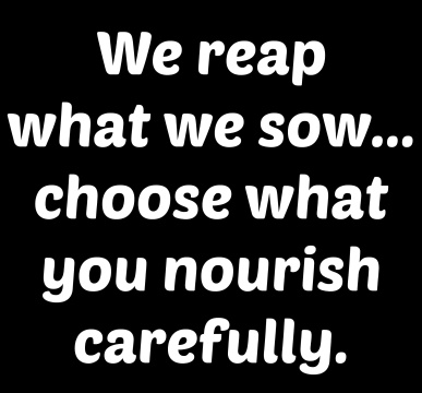reap-what-you-sow