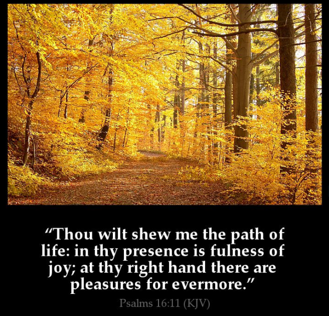 thou show me path of life proverbs
