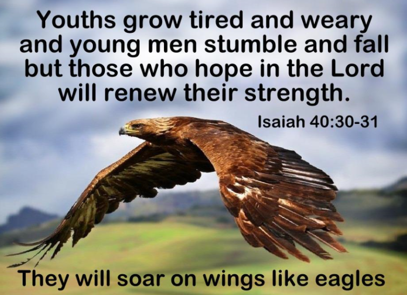 youth stumble but isaiah says they can soar.PNG
