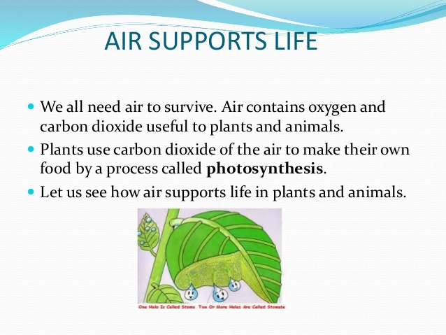 air supports life air-around-us-8-638