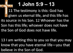 life eternal life in God through the son