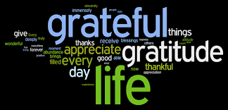 thankful and grateful tags