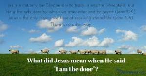 door jesus is shepherd to sheep
