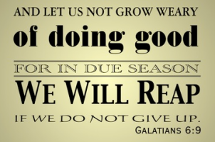 dont geat weary in well doing you shall reap Galations
