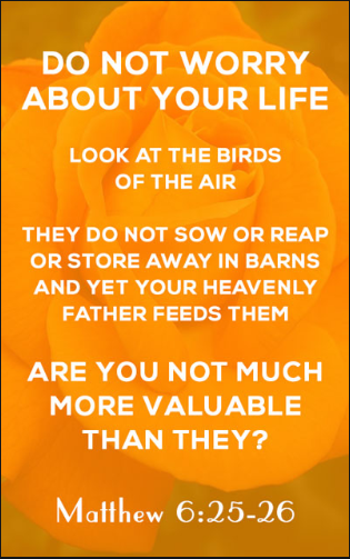 You are valuable Matthew 6 like birds in air